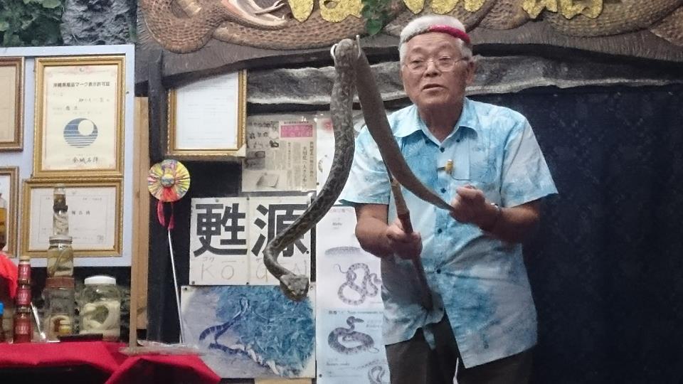 いこいの駅いずみ,沖縄,白いヘビ,マングース