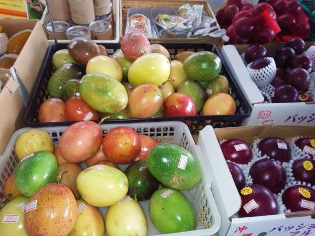 沖縄,フルーツ,特産品